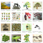 Bonsai Beauty Etsy Treasury