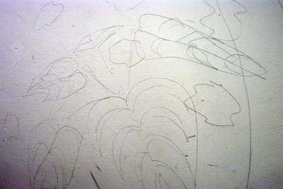 A suggestion of plants in graphite on wall painted with white acrylic eggshell.