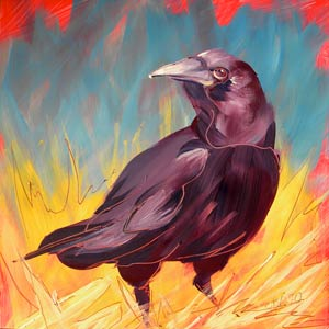© Pam Van Londen 2010,  Crow in the Grass 2, oil on claybord,  8x8