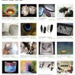 Etsy Feathers and Wings in Flight Treasury