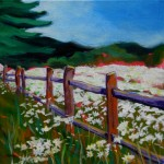 © 2013 Pam Van Londen. Daisies At The Fence. Acrylic on 12x12x.5 gallery-edged archival canvas. No need to frame. corvallis, flower field, sky, vivid, trees, red, blue, green, dark gree, white, pink, light blue, daily painting, portland, oregon, pam van londen