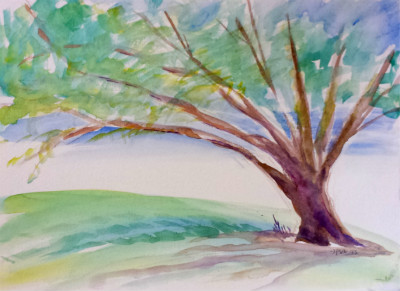 © 2013 Pam Van Londen. Park Trees 14. Watercolor on 12x9x.25 on archival paper. Comes unframed