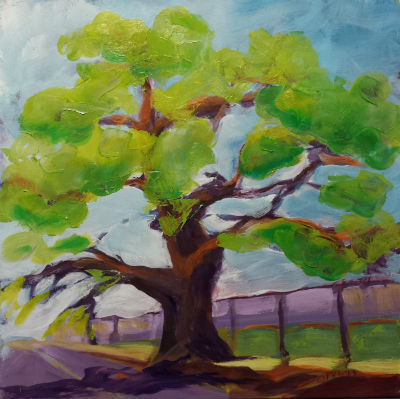 © Pam Van Londen 2013,  Oak Tree 1.2, oil on gessoboard,  8x8
